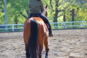 _horseriding